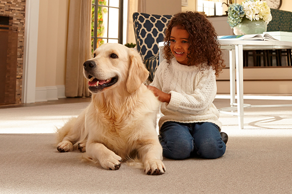 Let Us Help Select The Perfect Flooring For
